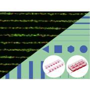 Mikropłytki testowe z mikrowzorami