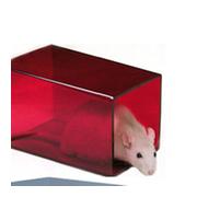 Tunel kwadratowy dla szczura lub myszy, czerwony