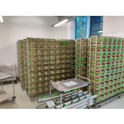 Używane regały indywidualnie wentylowane Green Line firmy Tecniplast