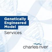 Usługi modyfikacji genetycznej modeli (GEMS) - Charles River