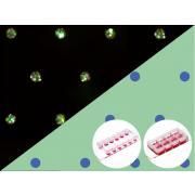 Mikropłytki z mikrowzorem do wielu komórek