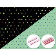 Mikropłytki z mikrowzorem do pojedynczych komórek
