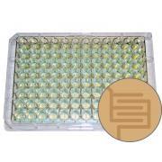 Matryca ECIS 96W10idf PET
